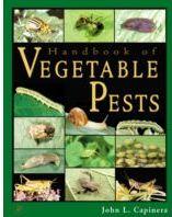 دانلود رایگان کتاب آفات سبزی و صیفی Handbook of Vegetable Pest