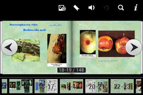 کتاب بیماریهای درختان میوه