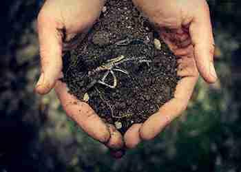 خاکشناسی