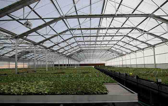 اصول سرمایشی در گلخانه