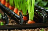 تغذیه باغات میوه با روش کود آبیاری