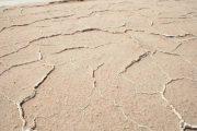 مقابله با خشکسالی و مصرف بهینه آب در کشاورزی